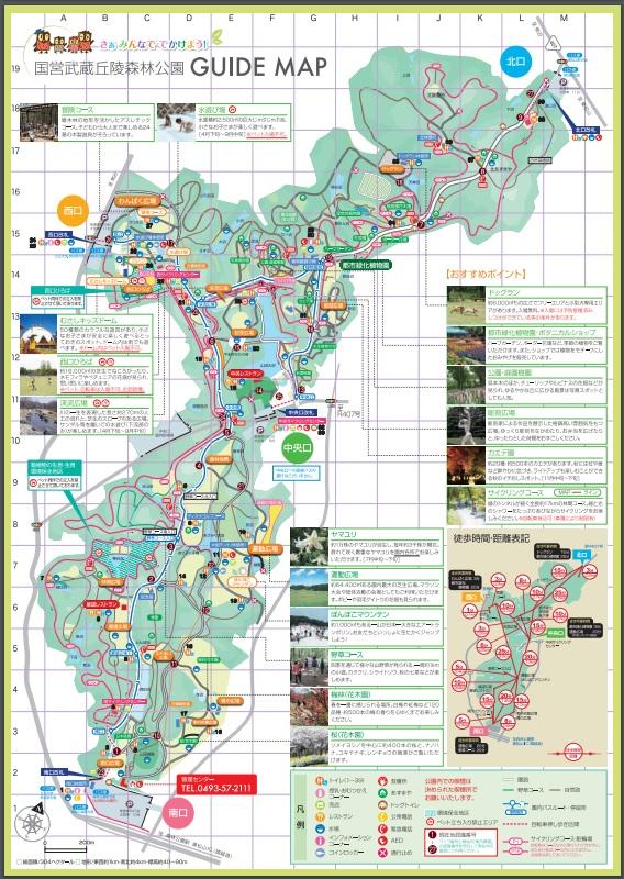 丘陵 森林 武蔵 公園 国営